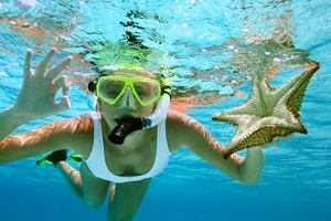 Paradise Breezes -  SNORKELING AND DIVING
